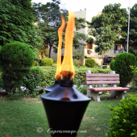 Diwali Delight: Garden Torches