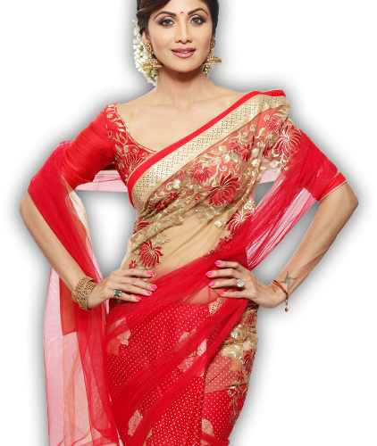 Saree Sage this Season 2016